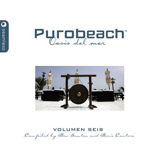 Purobeach Vol. 6 2010 (2CD)