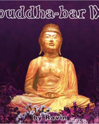 Buddha Bar Vol. 9