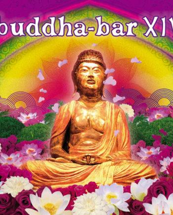 Buddha Bar Vol.14