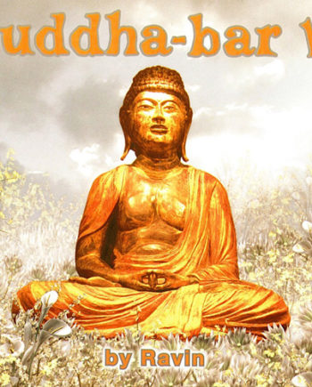 Buddha Bar Vol. 6